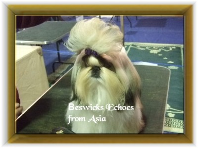"""Beswick's Echoes from Asia   """"Asia"""""""